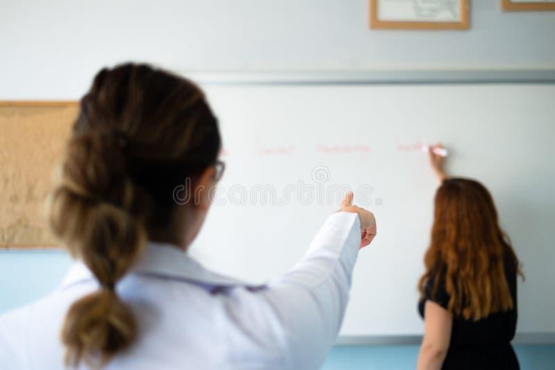 教师在教室 库存照片