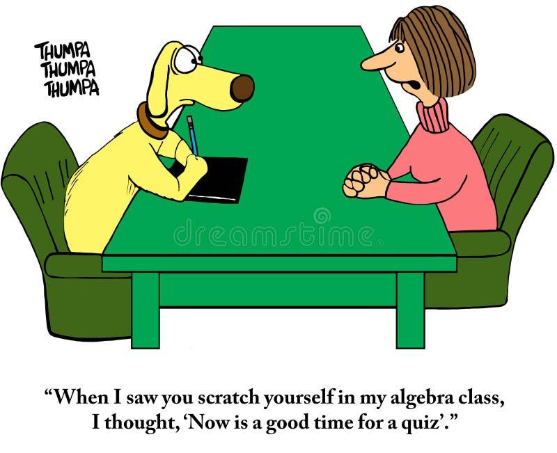 教师用小测验给狗带来惊喜 免版税库存照片