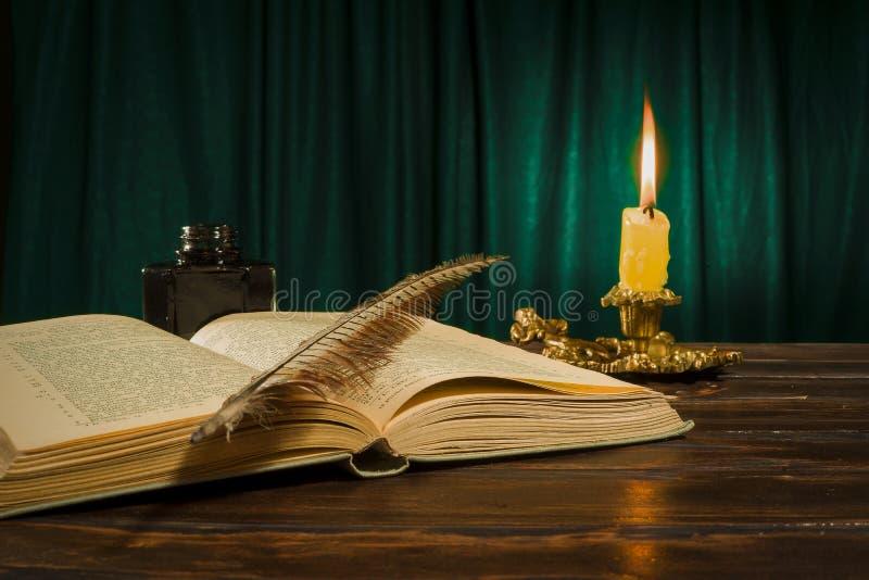 教育和文字概念,笔说谎在书的的墨水池 图库摄影