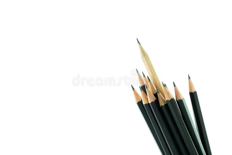 教育概念,在白色背景的铅笔 免版税图库摄影