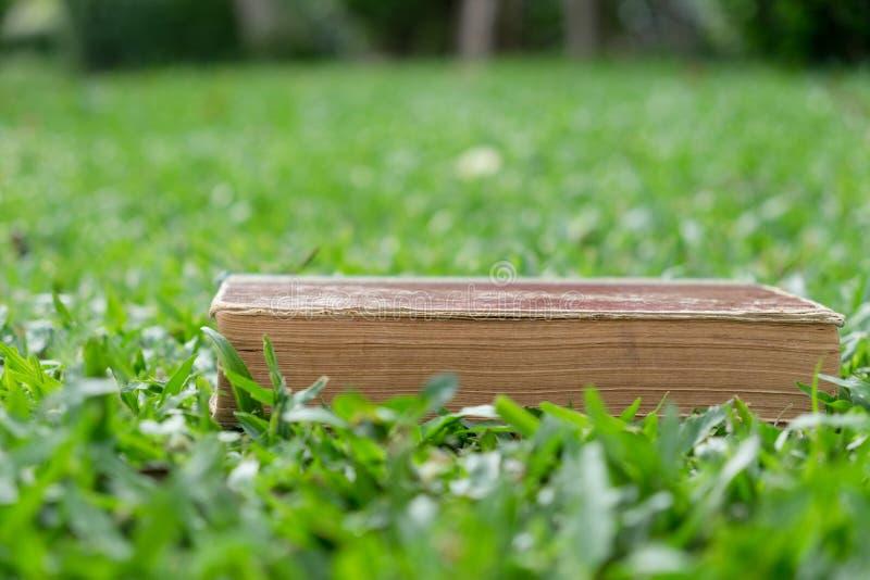 教育概念-说谎在草的书 免版税图库摄影