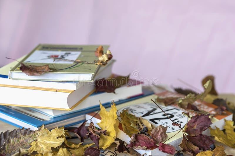 教育课本,在桌上的书与五颜六色的秋叶,反对与拷贝空间概念的浅紫色的背景 免版税库存图片