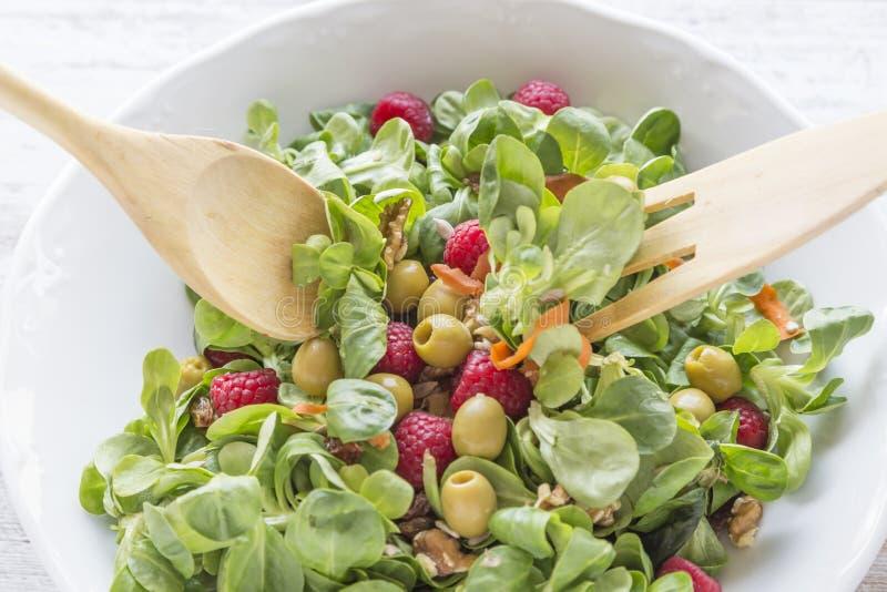 教规、莓、葡萄干、橄榄、坚果、红萝卜和小核服务沙拉  免版税库存图片