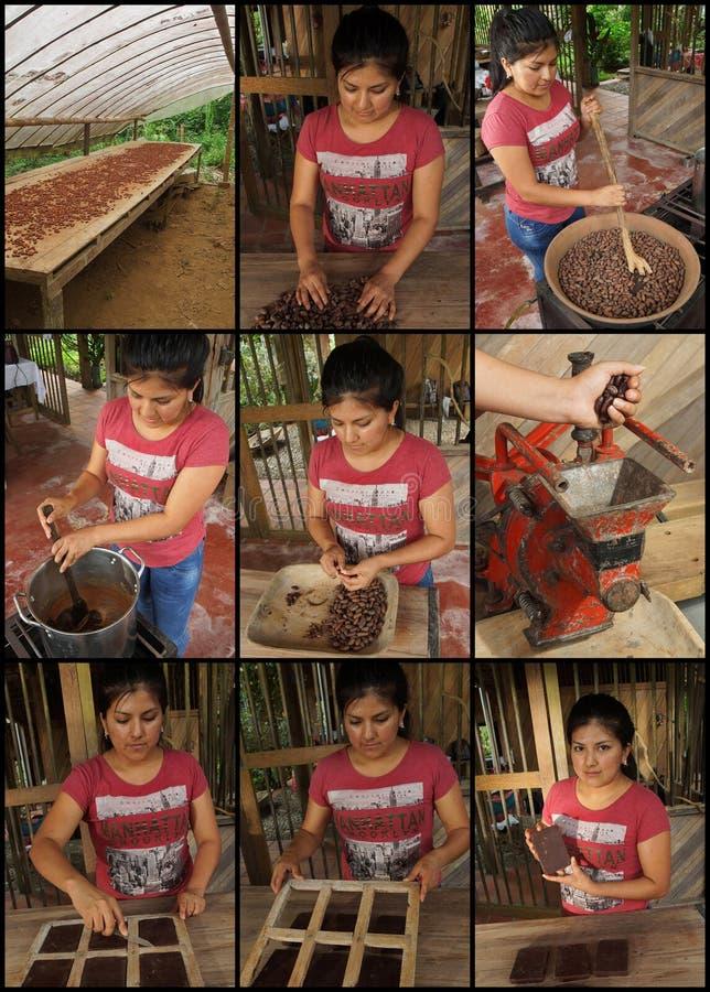 教过程跟随拉丁妇女做自创巧克力9张照片的序列  免版税库存图片