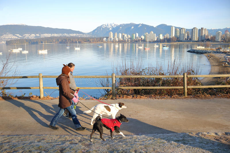 散步与宠物的狗所有者风景 免版税库存图片
