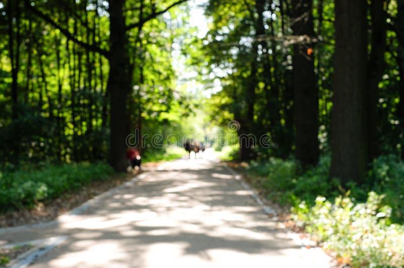散步型夏季公园模糊背景 与家人和朋友一起在城市里进行户外娱乐 库存照片