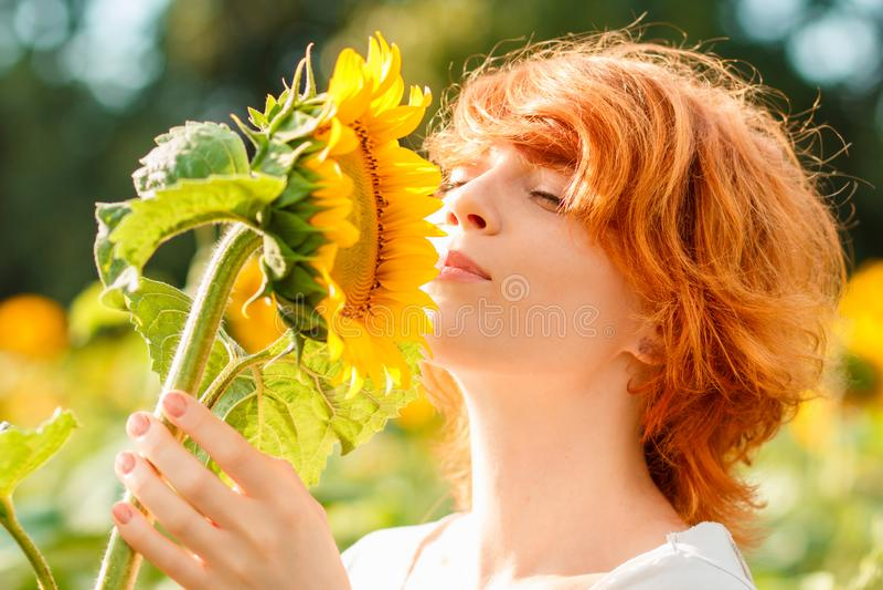 敬佩向日葵,妇女嗅向日葵,女孩的年轻红发女孩享受在向日葵的领域的自然在日落 图库摄影