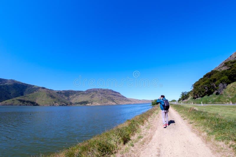 敬佩新西兰的美好的风景的旅客 免版税库存照片