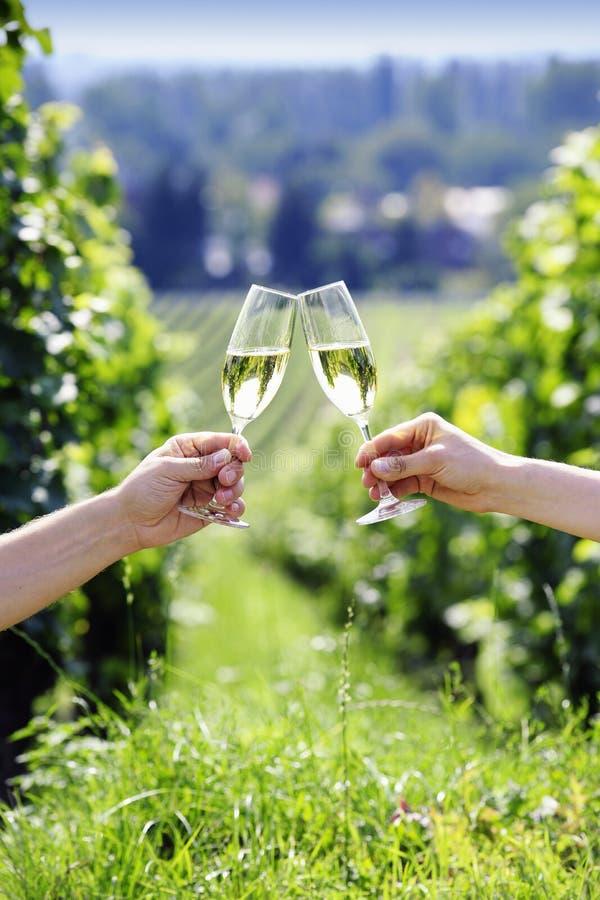 Download 敬酒与二杯香槟 库存图片. 图片 包括有 食物, 收获, 室外, 颜色, 玻璃, 藏品, 饮料, 对象, 葡萄园 - 30327065