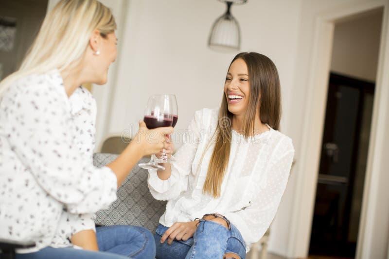 敬酒用红葡萄酒的两个少妇在屋子里 库存图片