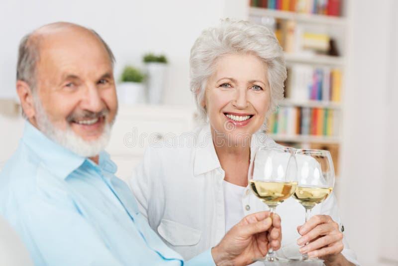 敬酒的愉快的资深夫妇 库存图片