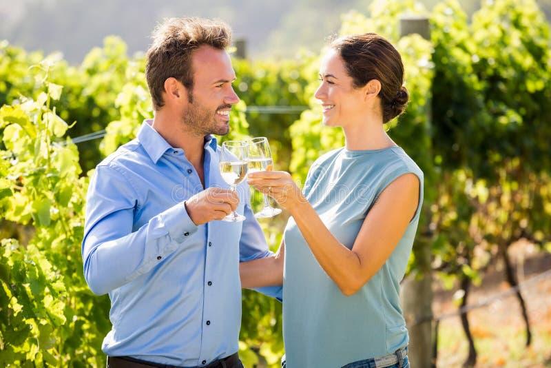敬酒葡萄酒杯的微笑的夫妇在葡萄园 库存图片