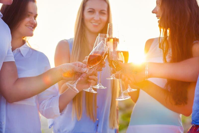 敬酒香槟汽酒的小组朋友在海滩 免版税库存照片