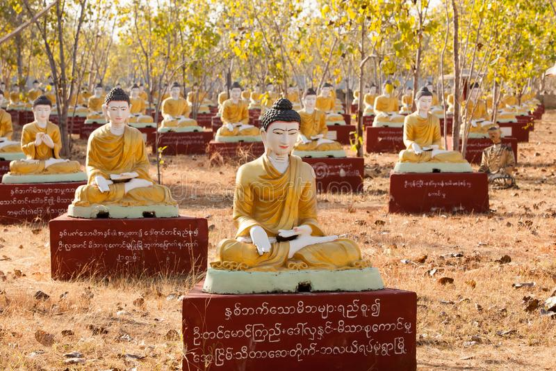 数千供以座位的菩萨图象在Bodhi树, Monywa,砂海螂下 免版税库存照片