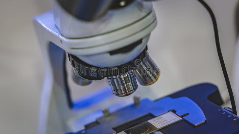 数字与载玻片的显微镜照相机 库存图片