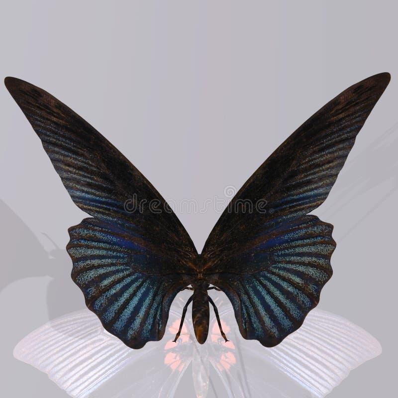 数字式蝴蝶 皇族释放例证