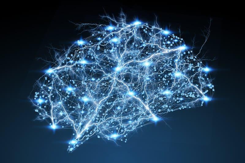 数字式X-射线人脑3D翻译 向量例证
