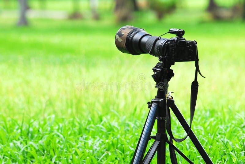 数字照相机和三脚架
