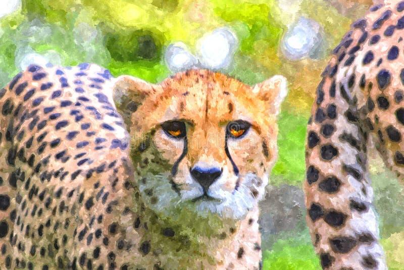 数字艺术-看直接地照相机的猎豹的水彩绘画 皇族释放例证