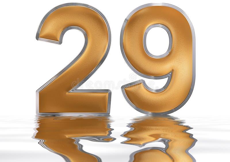 数字29,二十九,反射水表面上,孤立 皇族释放例证