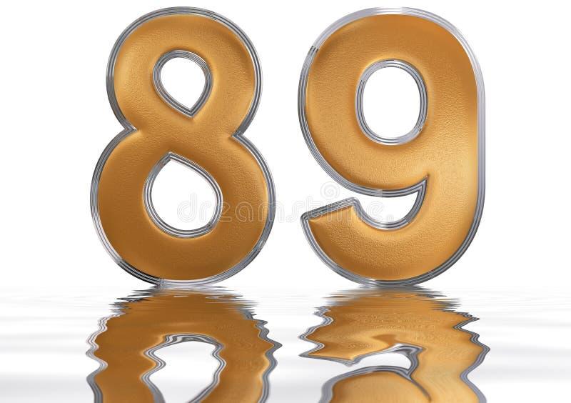 数字89,八十九,反射水表面上,孤立 向量例证
