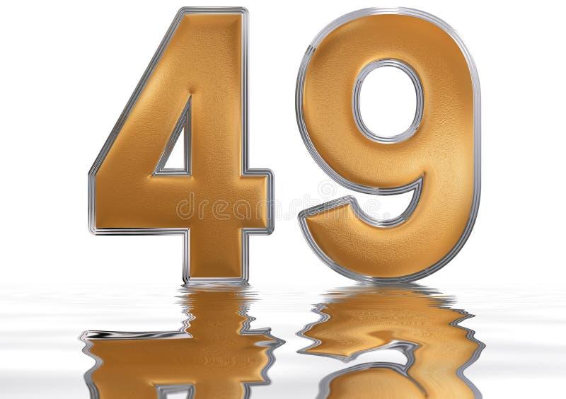数字49,四十九,反射水表面上, 向量例证