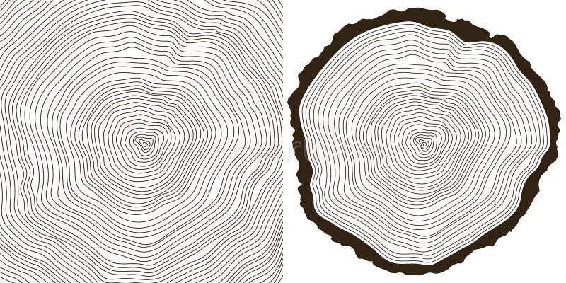 敲响结构树 库存例证
