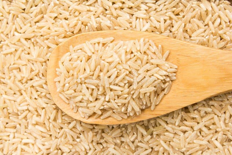 整个中国米种子 在木匙子的五谷 关闭 库存图片