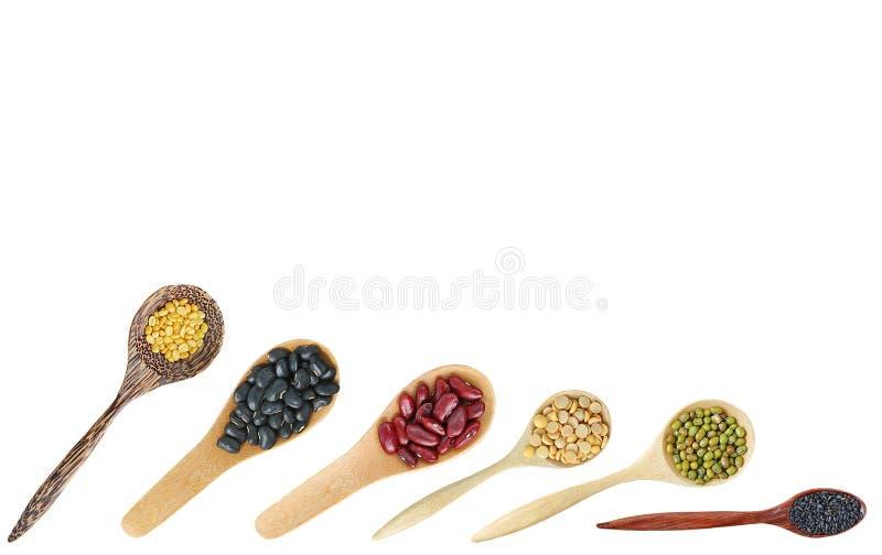 整个五谷豆品种在木匙子的有在白色背景隔绝的拷贝空间的 库存图片