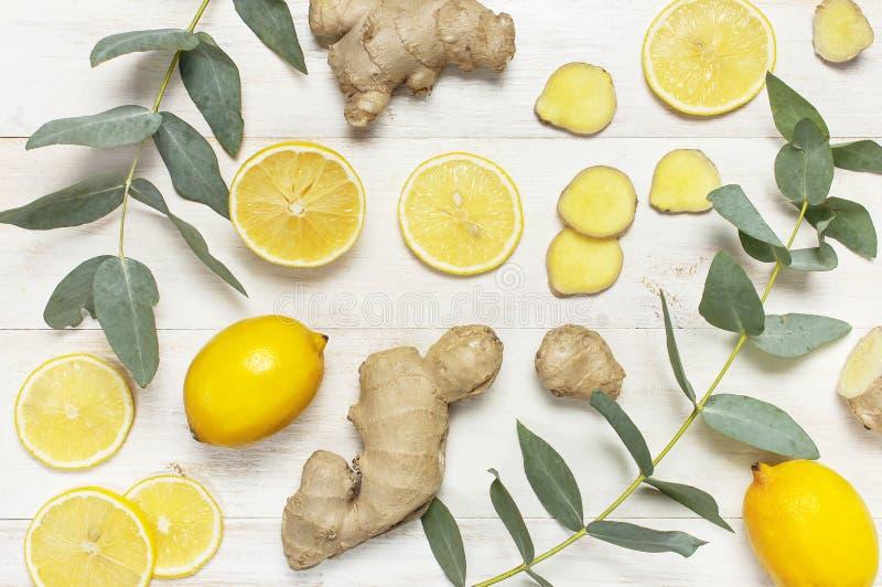 整个和切的新鲜的柠檬,姜根,在白色木背景的玉树叶子 平的位置顶视图拷贝空间 最小 免版税库存照片