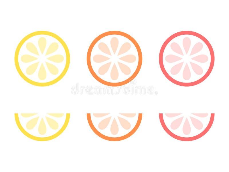 整个和切的桔子、柠檬和葡萄柚传染媒介象  被隔绝的柑橘切片 柑橘水果-传染媒介例证 向量例证