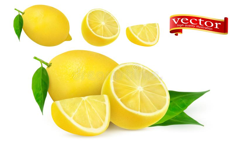 整个套成熟水多的柠檬和腹片现实传染媒介高细节 柠檬汁新鲜水果, 3d传染媒介象 皇族释放例证