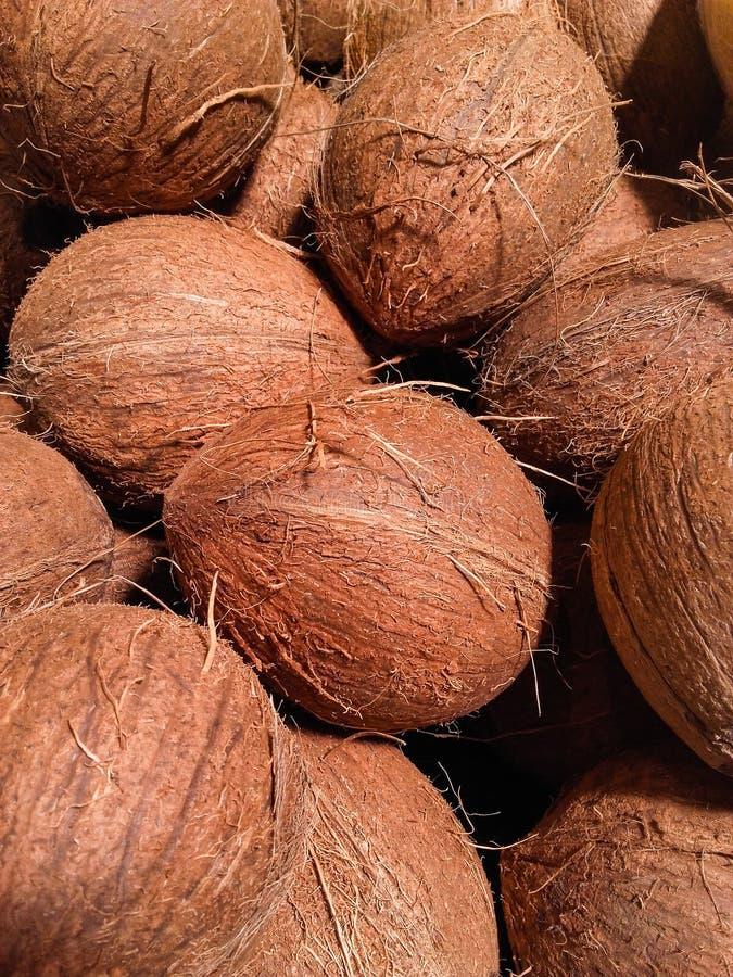 整个未加工的整个椰子待售在市场上 库存照片