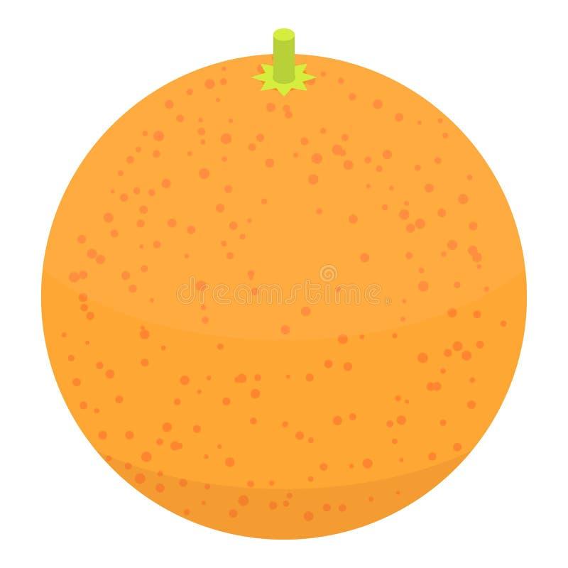 整个葡萄柚象,等量样式 向量例证