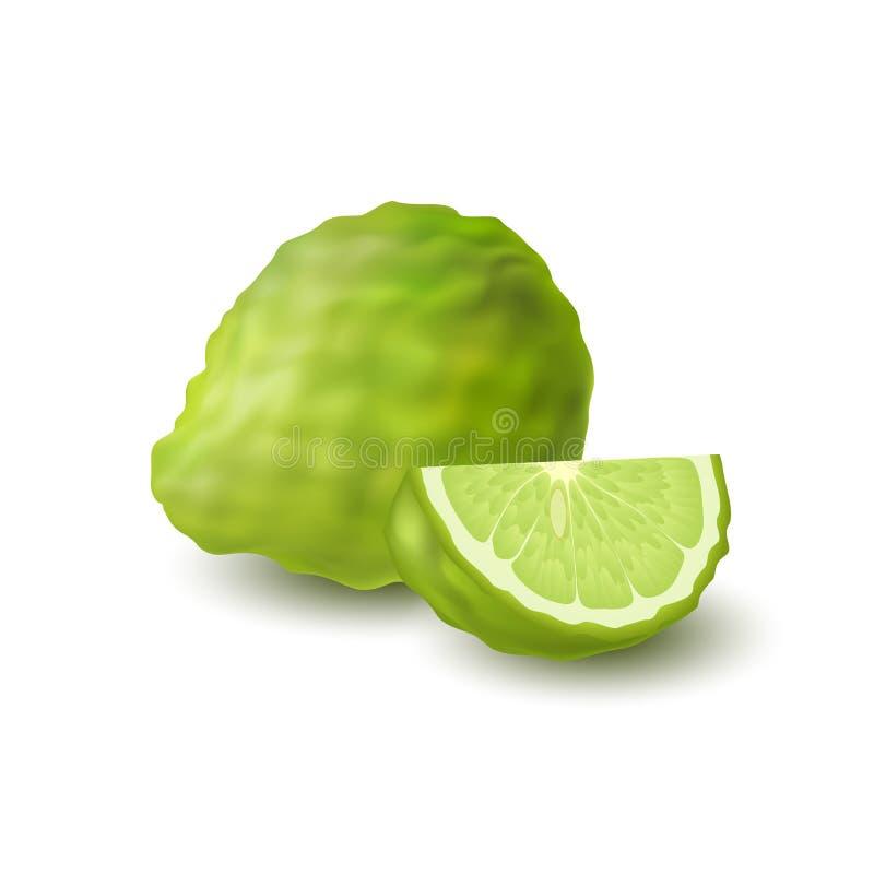 整个被隔绝的colorfull绿色和切片水多的香柠檬,与阴影的非洲黑人石灰在白色背景 现实楔子柑橘fr 皇族释放例证