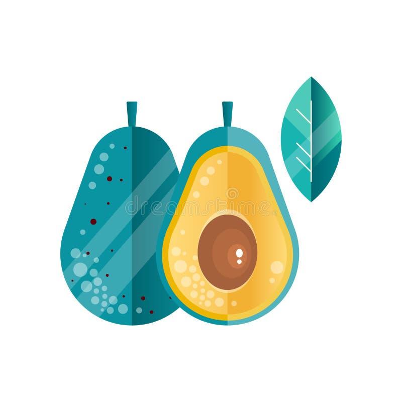 整体和一半成熟鲕梨和叶子在梯度颜色 健康菜 素食营养 天然产品 向量例证