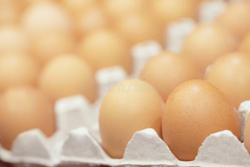 整蛋的关闭在箱子 图库摄影