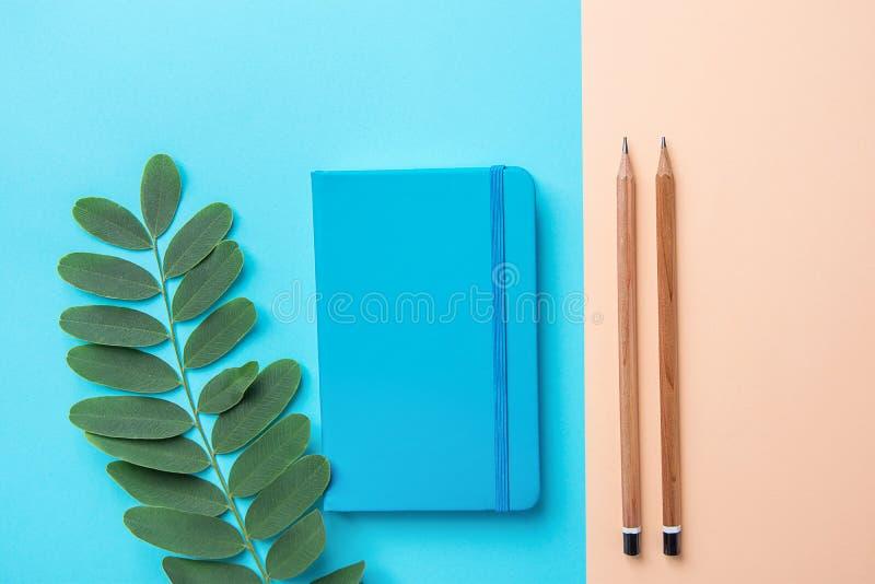 文字笔记薄木头书写在对比蓝色桃子桃红色淡色背景组合的绿色植物分支 企业教育 免版税图库摄影