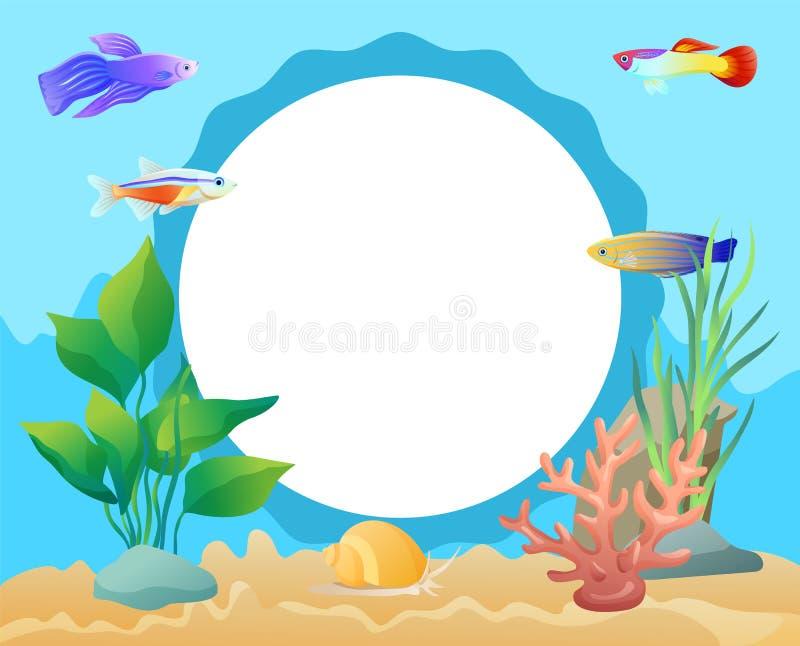文本的水族馆水下的元素圈子框架 皇族释放例证