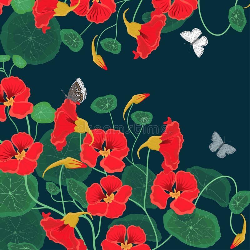 文本的背景与金莲花花和蝴蝶 r 向量例证