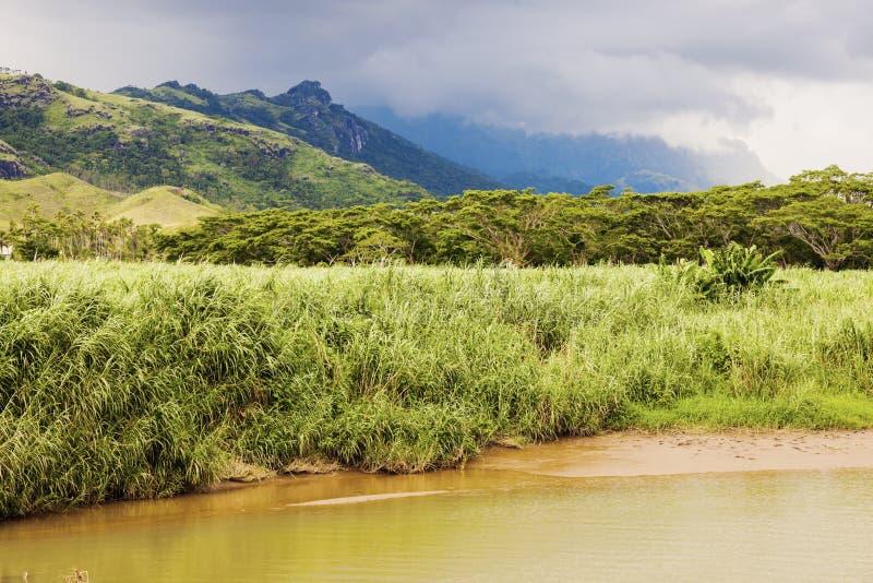斐济风景-维提岛海岛 免版税库存图片