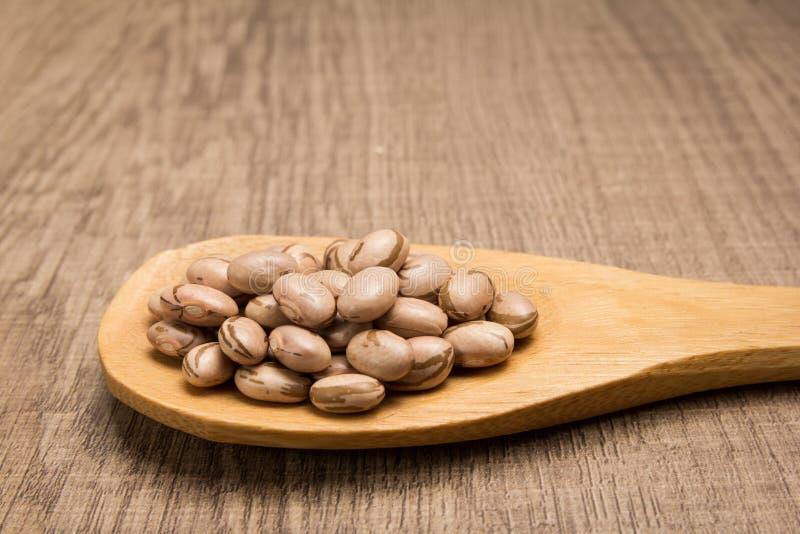 斑豆豆类 在木匙子的五谷 土气 库存图片