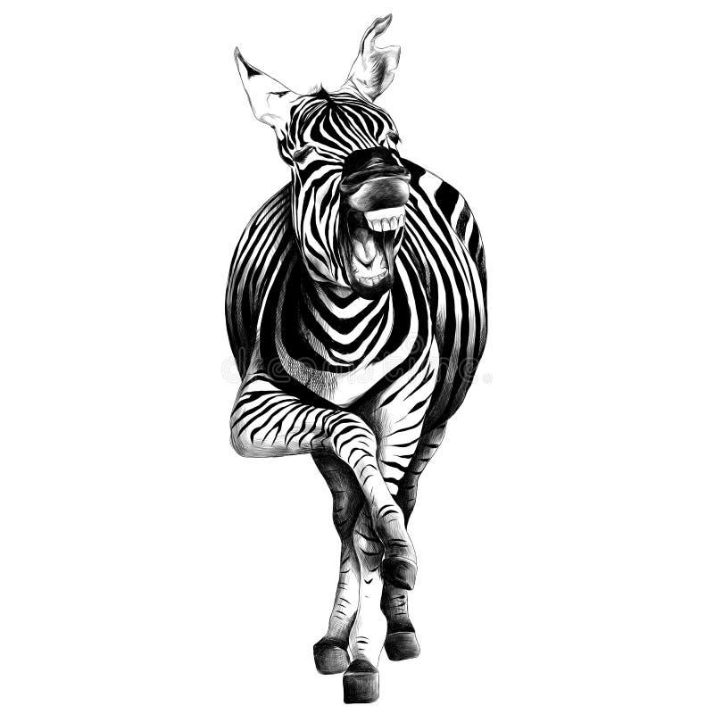 斑马剪影向量图形 库存例证
