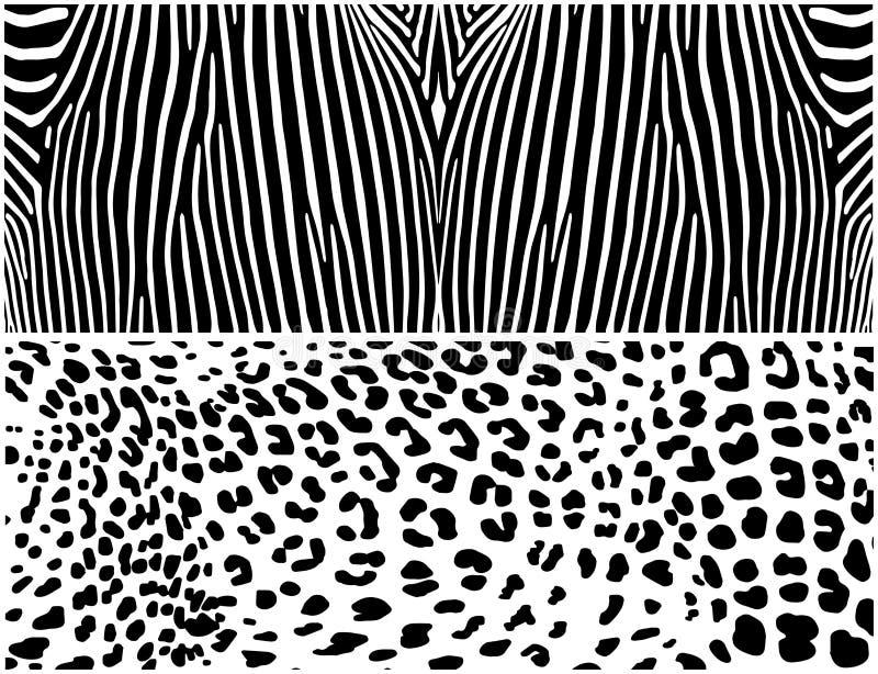 斑马和豹子 动物背景 向量例证