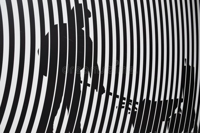 斑马纹理和模式 图库摄影