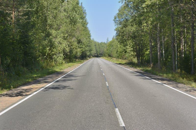 斜向一边,在夏天晴天的沥青高速公路在远处离开和木头 免版税图库摄影