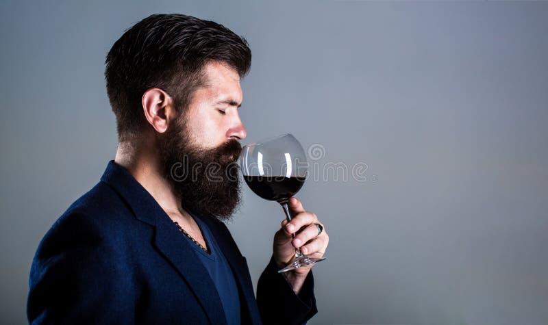 斟酒服务员,与杯的degustator红酒,酿酒厂,男性酿酒商 胡子人,有胡子,品尝红酒的斟酒服务员 免版税库存图片