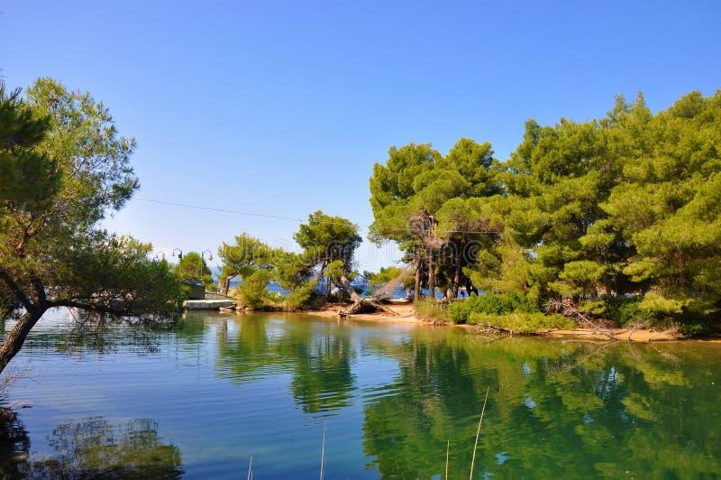 斯基亚索斯岛lanscape美丽的自然照片  免版税库存图片