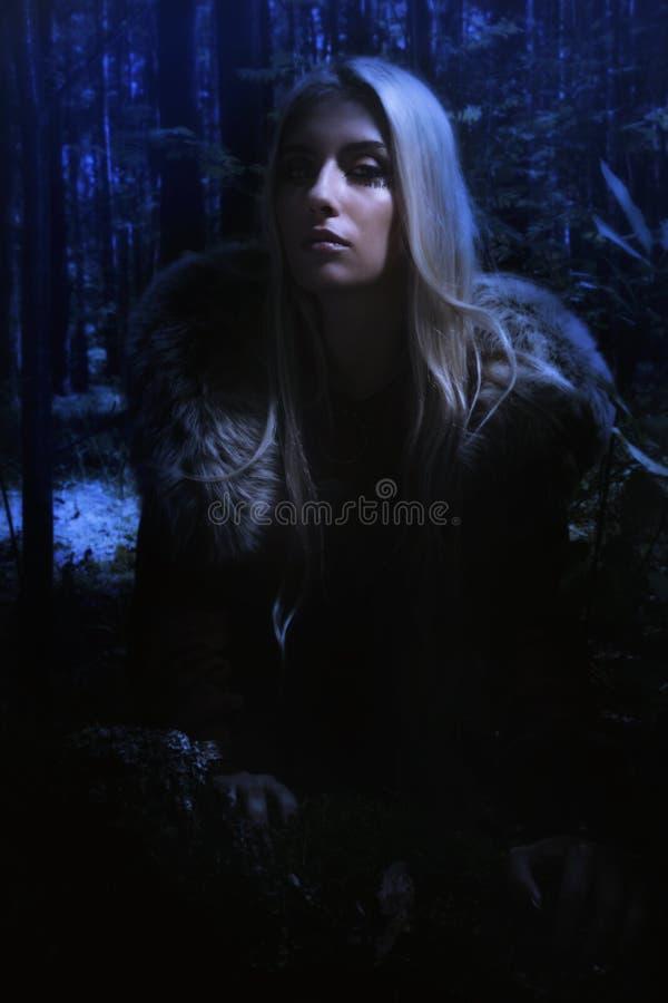 斯堪的纳维亚女孩在晚上森林里 图库摄影