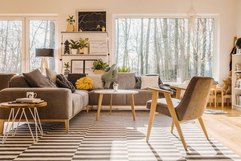斯堪的纳维亚,被日光照射了客厅内部wi的低角度视图 库存照片